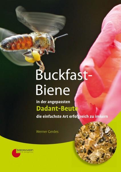 Buckfast-Biene in der angepassten Dadant-Beute, Werner Gerdes
